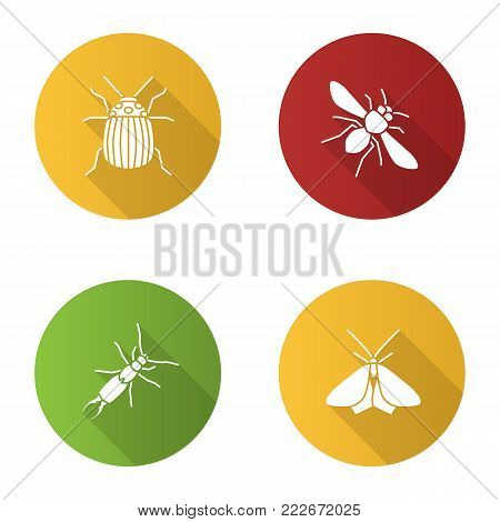 Insects flat design long shadow glyph icons set. Colorado beetle, honey bee, earwig, moth. Vector silhouette illustration