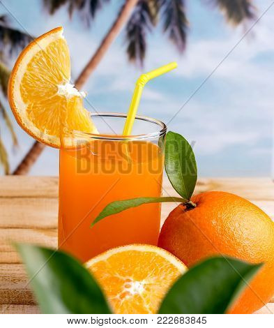 Freshly Squeezed Juice Shows Healthy Orange Drink And Citrus