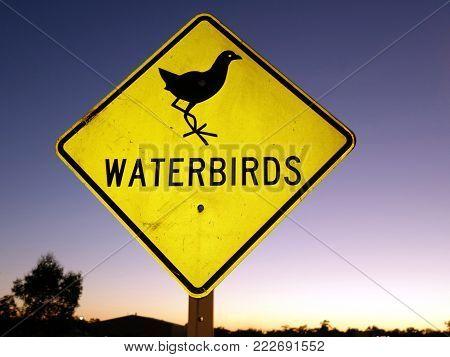 Road sign warning of the likelihood of water birds crossing the road.