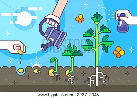 Growing seeds in the ground vector line illustration