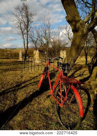 An old Jewish cemetery, forgotten Jewish cemetery