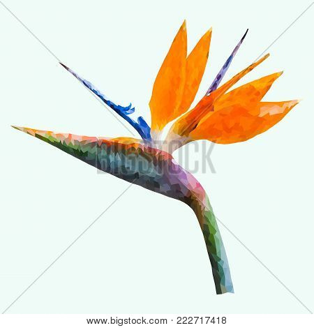 Low-poly vector flower, low polygon bird of paradise or strelitzia plant design on the light green background, abstract geometric vector illustration poster