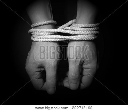Male Hands Bound With Rope.