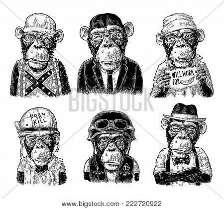 Monkey in human clothes. Redneck, businessman, hipster, biker, soldier, beggar. Vintage black engraving illustration for poster. Isolated on white background