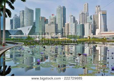Singapore, Singapore - December 11, 2017. Skyline in Singapore with skyscrapers, across a pond of water lilies.
