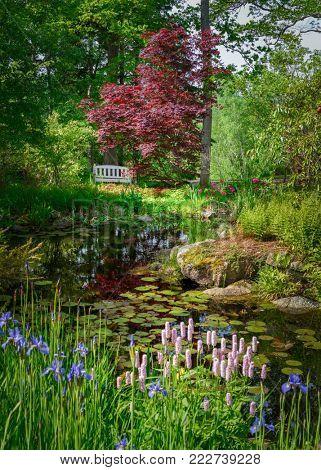 Wooden bench overlooking a still pond.