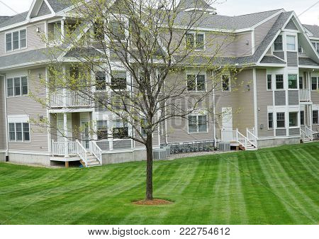 apartment building with mowed green lawn and tree