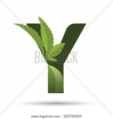 letter Y. medical marijuana, cannabis green leaf logo. vector illustration.