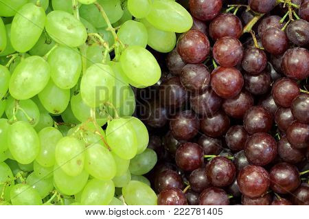 red grap and green grap bunch for background
