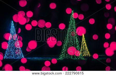 Christmas Season Decorations And Lights At Gardens