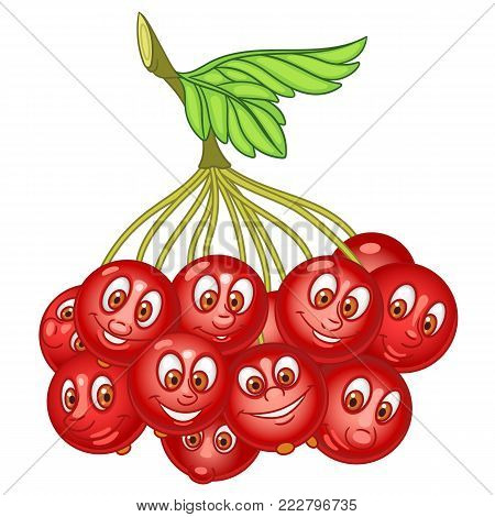 Cartoon Rowanberry character. Rowan tree Berries. Happy Fruit symbol. Eco Food icon. Design element for kids coloring book, colouring page, t-shirt print, logo, label, patch or sticker.