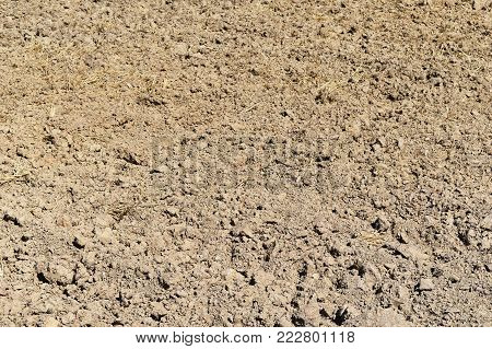 soil lump in rice field before plant rice