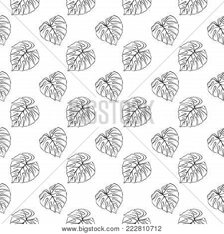 Monstera leaf tropical plant ink line art hand drawn sketch seamless pattern texture background vector