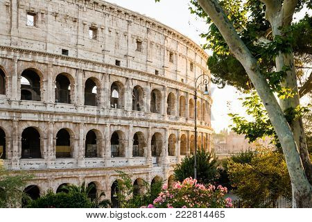 The Colosseum, or Coliseum, also known as the Flavian Amphitheatre, is an oval amphitheatre in the centre of the city of Rome, Italy.