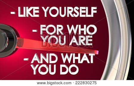 Like Yourself for Who You Are and What You Do Speedometer 3d Illustration
