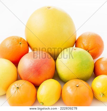 Fruits pattern made of lemon, orange, grapefruit, sweetie and pomelo on white background.