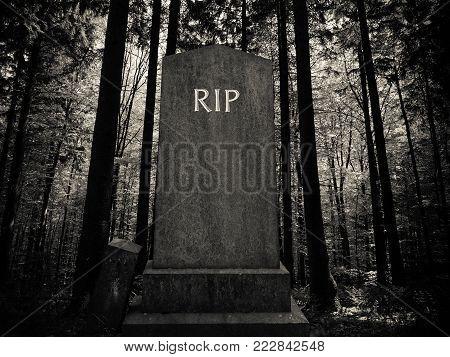 Spooky RIP Gravestone In A Dark Forest Setting