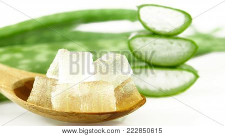 Aloe Vera (Aloe barbadensis Mill.,Star cactus, Aloe, Aloin, Jafferabad or Barbados) a very useful herbal medicine for skin care and hair care.