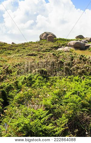 travel to France - green moorland in Ploumanac'h site of Perros-Guirec commune on Pink Granite Coast of Cotes-d'Armor department in the north of Brittany in sunny summer day