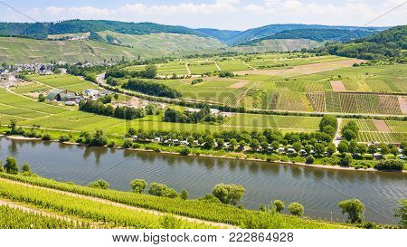 travel to Germany - above view of vineyards and fields in valley of Mosel river in Cochem - Zell region on Moselle wine route in sunny summer day