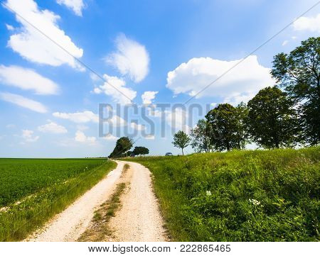 country landscape - dirty road along green medicago field near village L'Epine Marne in sunny summer day in Champagne region of France