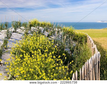 travel to France - Second World War bunker on Cap Gris-Nez on English channel in Cote d'Opale district in Pas-de-Calais region of France in summer day