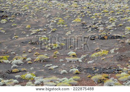 Desert Landscape in El Hierro Canary Island Spain