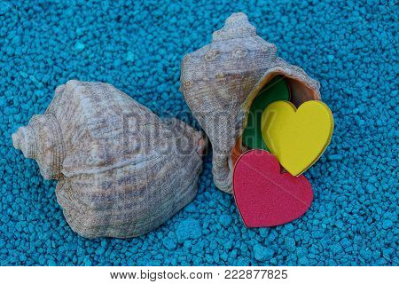 two large shells with colored hearts on blue stones