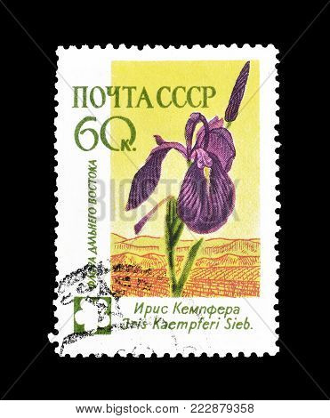 SOVIET UNION - CIRCA 1960 : Cancelled postage stamp printed by Soviet Union, that shows Iris.