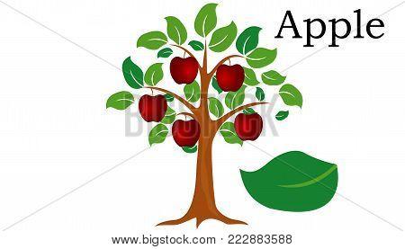 Apple  Trees vector element. vector icon green