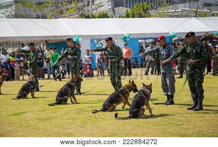 Bangkok, Thailand - January 13, 2018: German Shepherd obedience training in Thai Army base open to public in Children's Day 2018