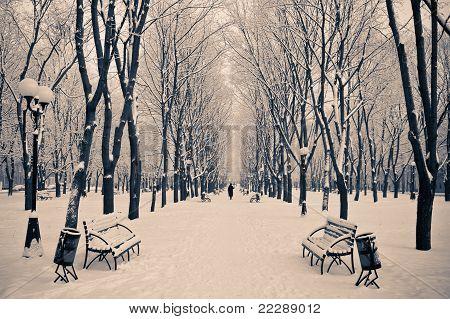 A snowy morning