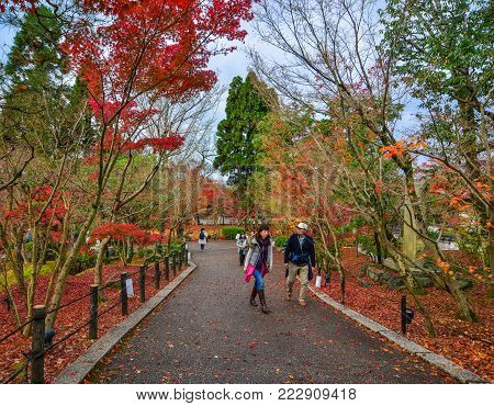 Kyoto, Japan - Nov 28, 2016. People Walking At Autumn Park In Kyoto, Japan. Kyoto Was The Capital Of