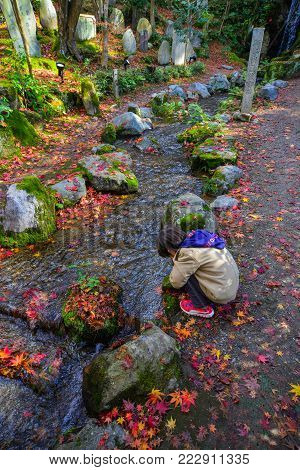 Kyoto, Japan - Nov 28, 2016. A Boy Playing At Autumn Park In Kyoto, Japan. Kyoto Was The Capital Of
