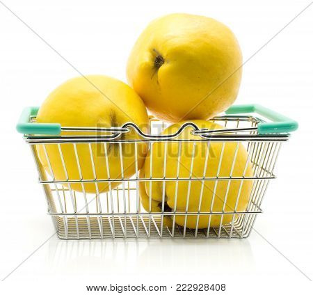 Three yellow quince out a shopping basket isolated on white background raw fresh