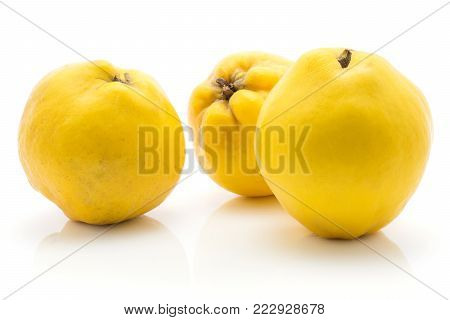 Three yellow quinces isolated on white background raw ripe