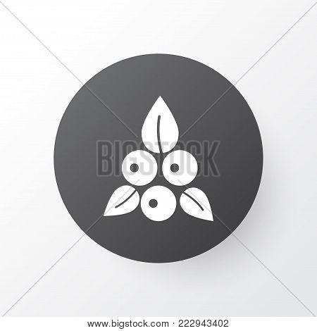 Berries icon symbol. Premium quality isolated cranberry element in trendy style.