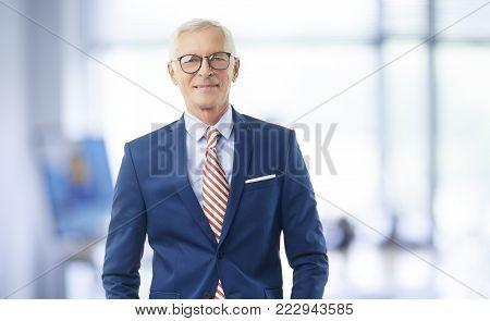 Senior Elderly Businessman Portait