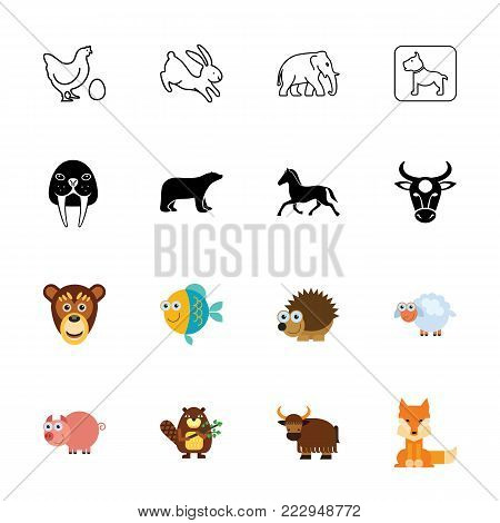 Icon set of animals. Zoo, zoology, wildlife. Animals concept. Can be used for topics like fauna, nature, biology poster