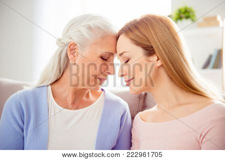 Mum Mom Mama Mommy Grandma Granny Concept Care Trust Home Comfort Concept. Close Up Portrait Of Char
