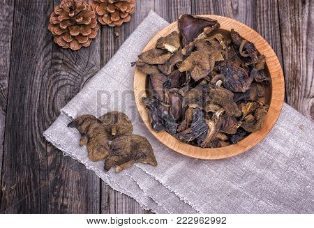 dry forest edible mushrooms, top view, close up