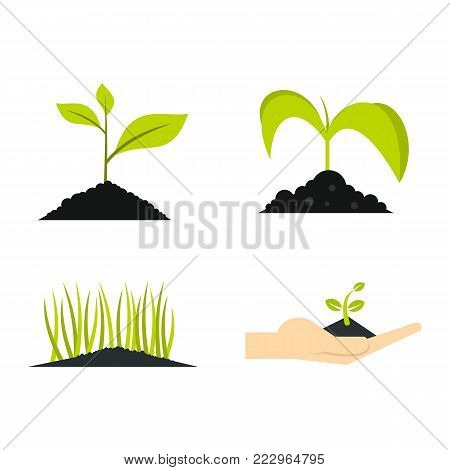 Ground plant icon set. Flat set of ground plant vector icons for web design isolated on white background