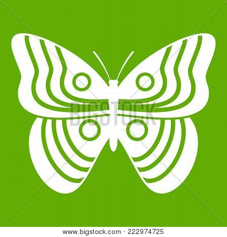 Stripped butterfly icon white isolated on green background. Vector illustration
