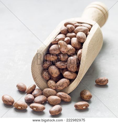 Uncooked dry pinto beans in a wooden scoop, square format