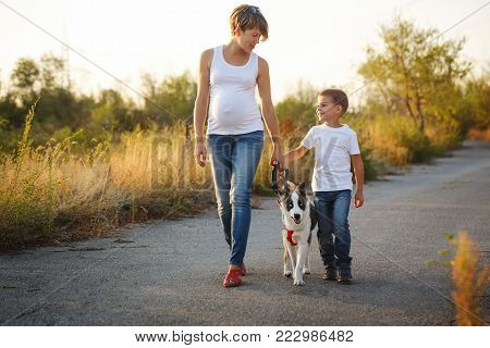 A family. A pregnant mother and son are walking with a pet. Purebred puppy Laika.