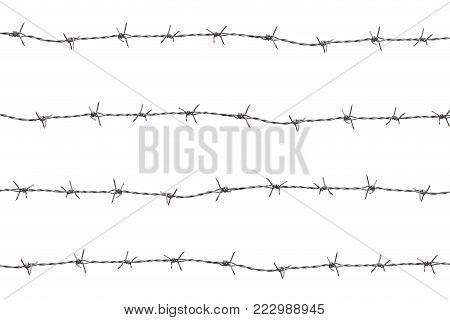 Barbed wire isolate on white background with clipping path for graphic designer, fence and home garden protection.