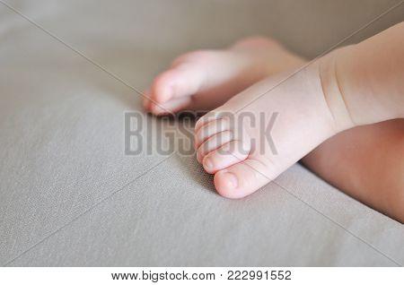 Baby feet in towel. New born baby leg.