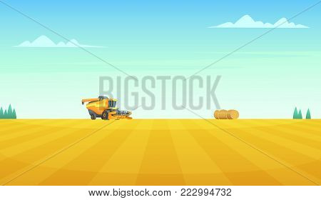 Rural summer landscape with Combine harvester agriculture machine harvesting golden ripe wheat field.