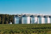Modern Granary, Grain-drying Complex, Commercial Grain Or Seed Silos In Sunny Summer Rural Landscape. Corn Dryer Silos, Inland Grain Terminal, Grain Elevators Standing In A Field. poster