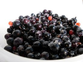Black currant in the white dish